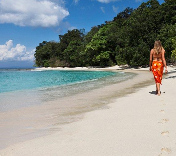 Romantic Radhanagar Beach And Elephant Beach Tour