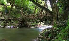 Guwahati - Shillong - Cherrapunji Trip
