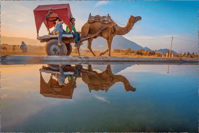Ajmer & Pushkar Tour Package