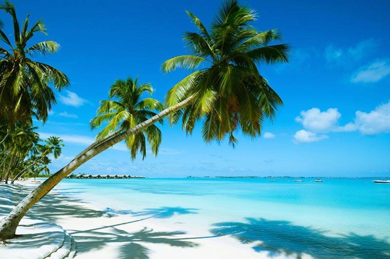 Top Islands for Honeymoon Tour