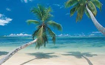 Cool Paradise Tour