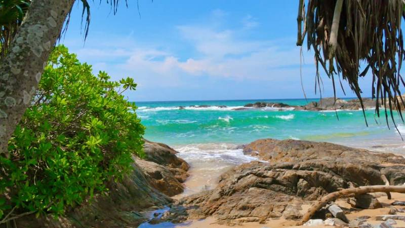 Srilanka Tour Package 5 Night 6 Days Tour