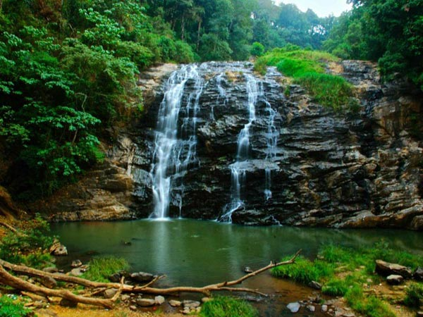 Coorg Tour from Bengaluru Package