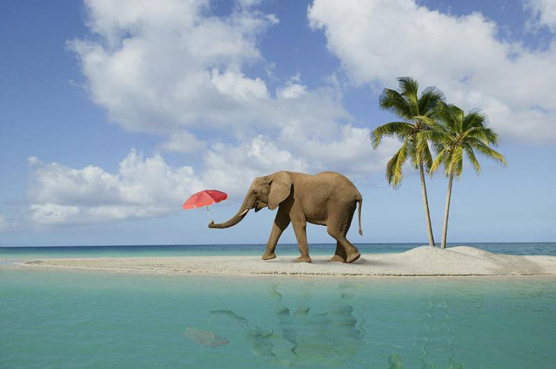 Port Blair - Havelock Tour Package
