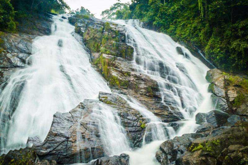 Athirappilly - Cherai - Cochin - Munnar Tour