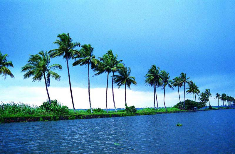 Athirappilly - Cherai Beach - Kumarakam - Alleppey Houseboat Tour