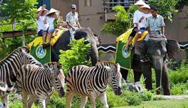 Safari Marine Park