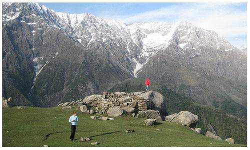 Customized Dharamshala Trekking Camp  Tour