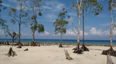Colourful Andaman Tour