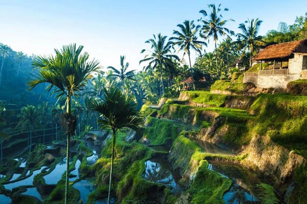 Bali with Thailand Tour