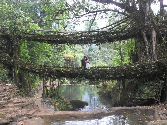 4 Nights/5 Days Shilong the Scoland of India Tour