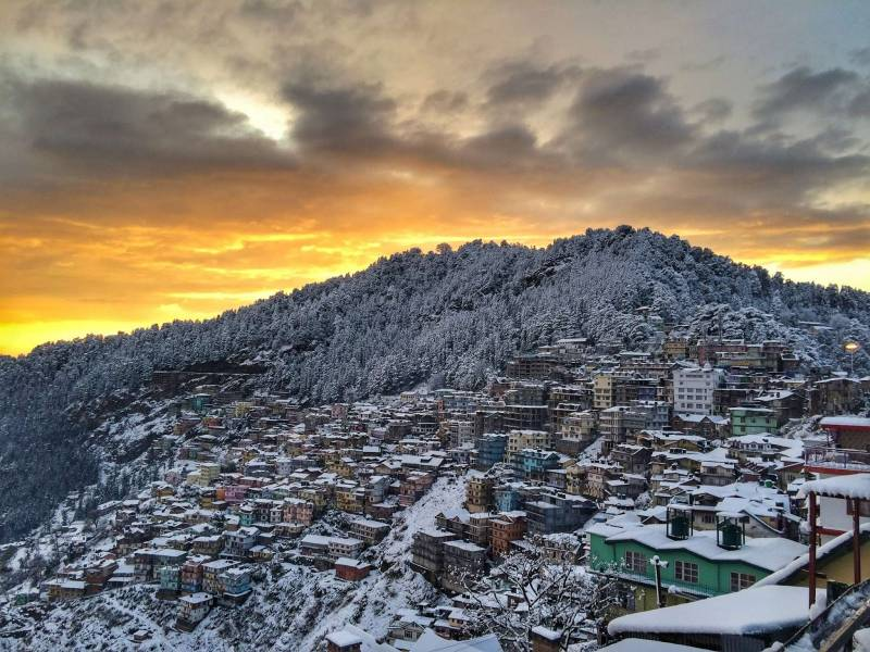 Chandigarh - Shimla - Manali Tour Package