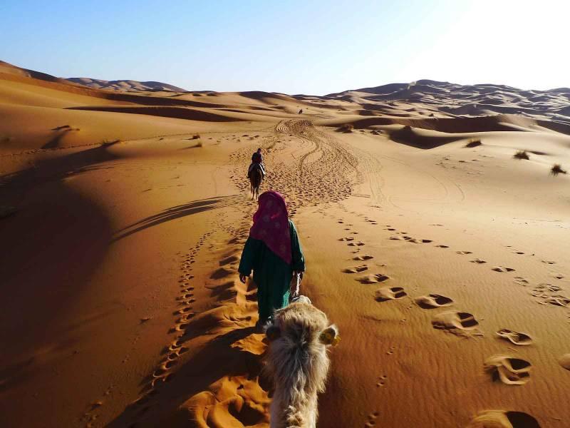Desert Package Tour