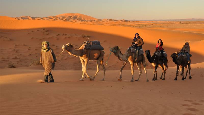 Rajasthan Budget Tour Enjoy the Fascinating Places and Camel Ride in Sand Dunes Tour