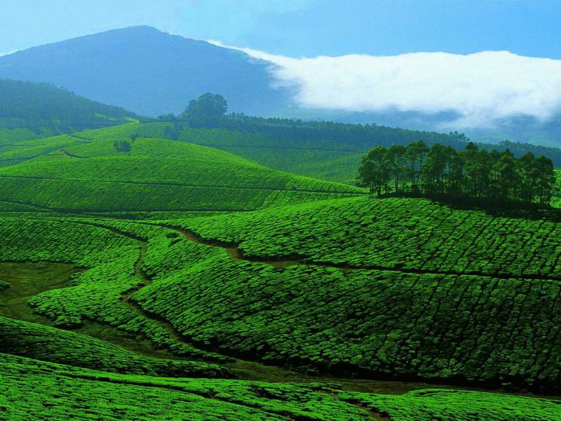 Majestic Kerala Hill Tour Kerala is a Superb Holiday Destination in India Tour