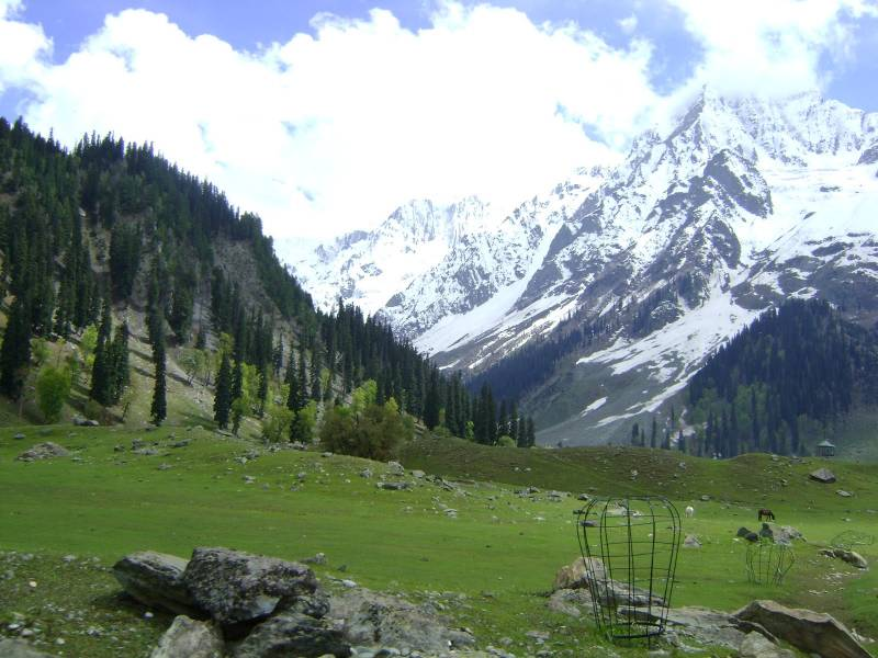 Kashmir Valley Tour 07Days