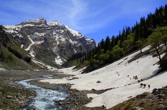 Kullu Manali Honeymoon Tour Packages