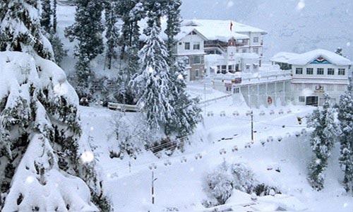 Shimla - Kufri - Manali - Rohtang Pass Tour