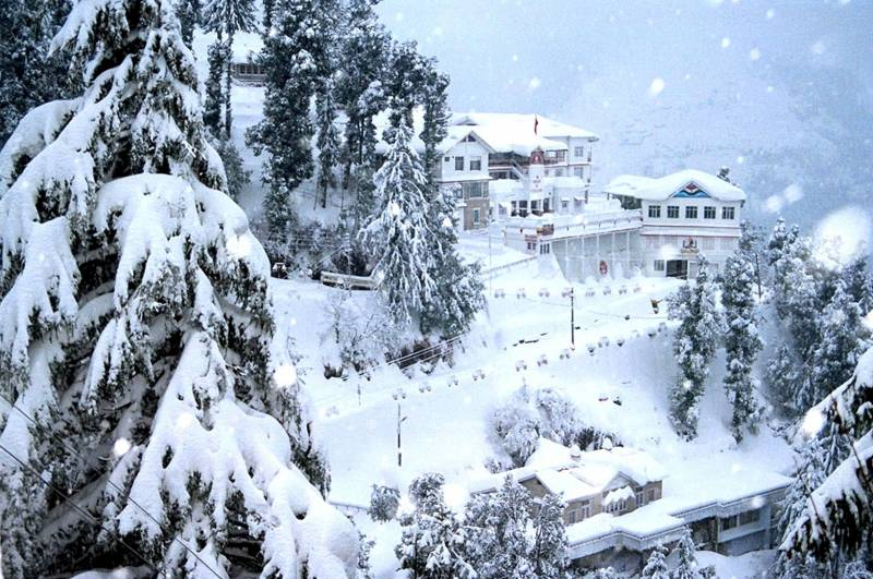 Manali Tour 6 Night 7 Day Package