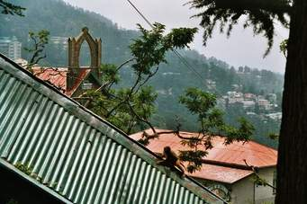 Shimla-manali 5 Nights and 6 Days