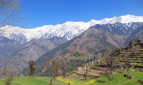 Trekking in Dhauladhars Tour