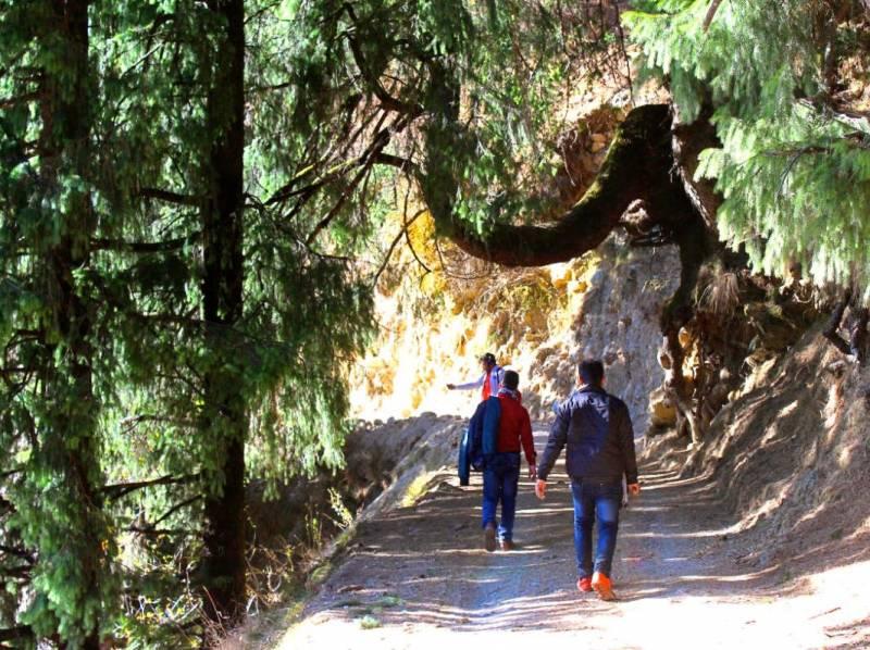 Bir Billing Trekking Tour