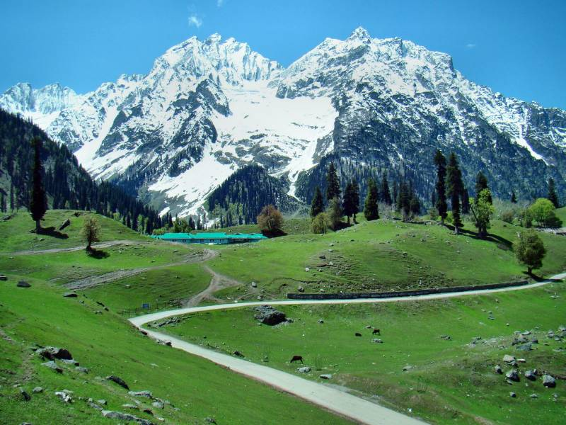 Kashmir Great Lakes Trek Tour