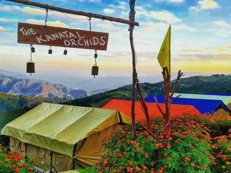 The Kanatal Orchids 3 Days Tour