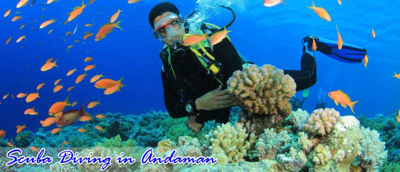 5 Days Nights Best Andaman Selling Package