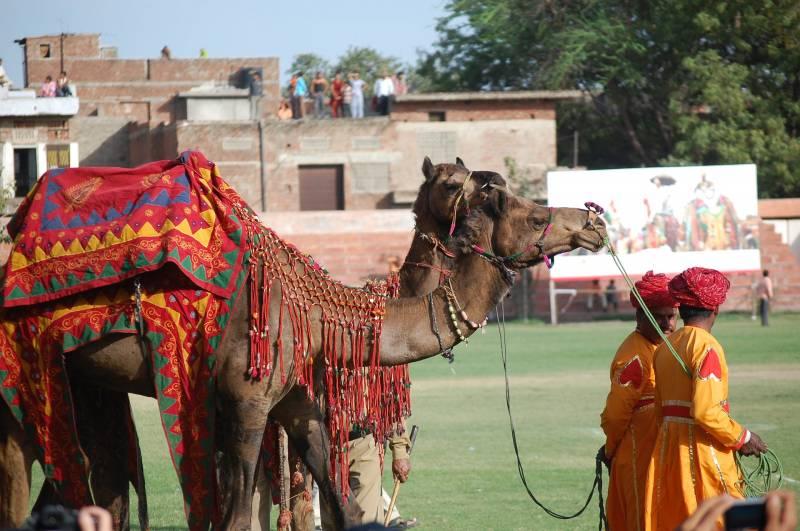 Royal Rajasthan 4 Days Tour