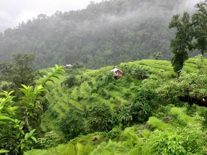 Gangtok  + Pelling  + Darjeeling Tour
