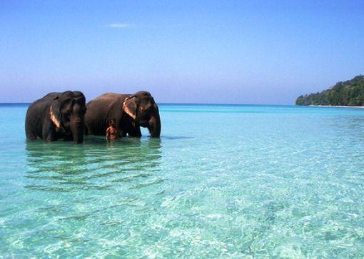 7 Days Andaman Tour