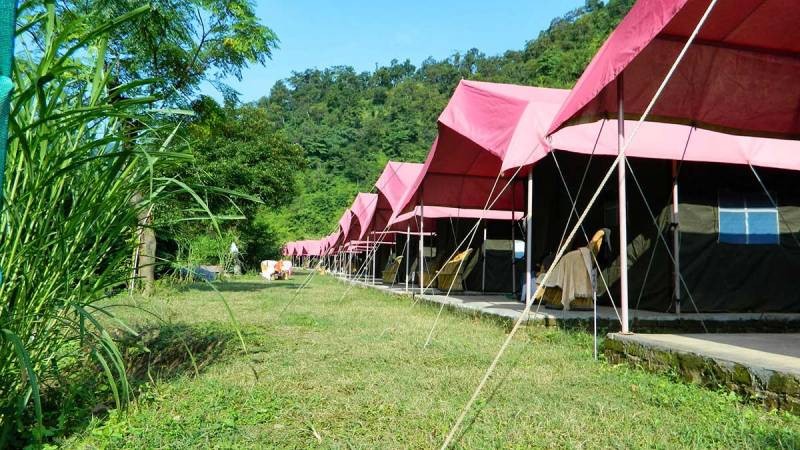 Rafting and Camping at Jungle Camp Tour