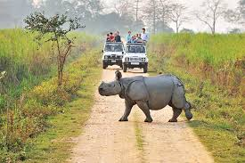 KAZIRANGA NATIONAL PARK WITH SHILLONG TOUR