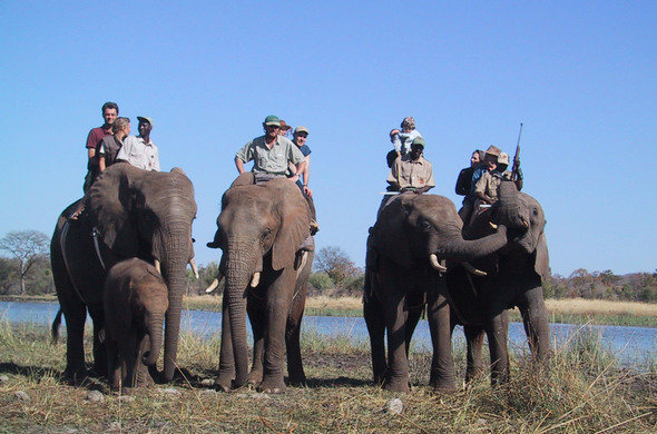 Kaziranga Tour 6 Days