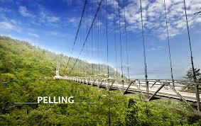 Delight Gangtok & Pelling Tour