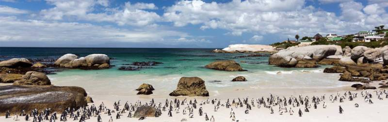 The Best of South Africa Tour 9 Days