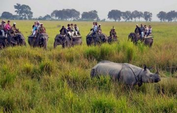Kaziranga National Park 7 Days Tour