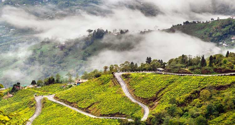 2 Nights 3 Days Darjeeling Package