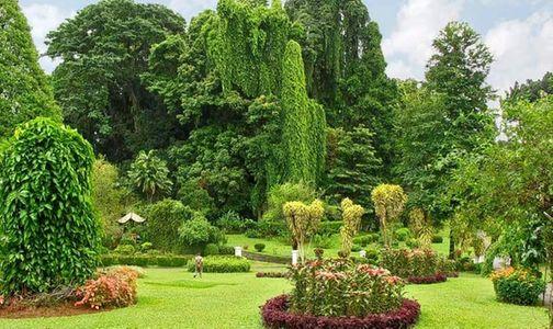 Serene Sri Lanka Tour
