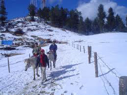 Best of Shimla & Manali Honeymoon Package By Car