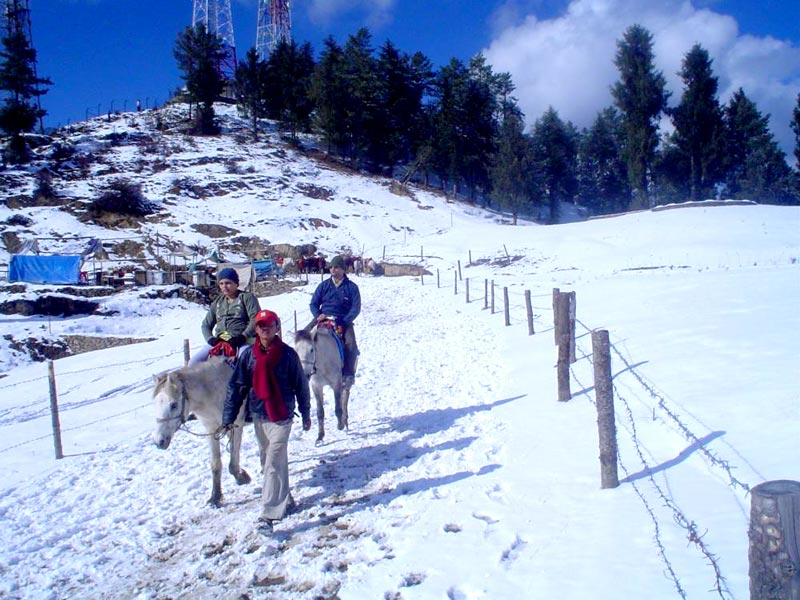 Shimla - Kashmir Tour