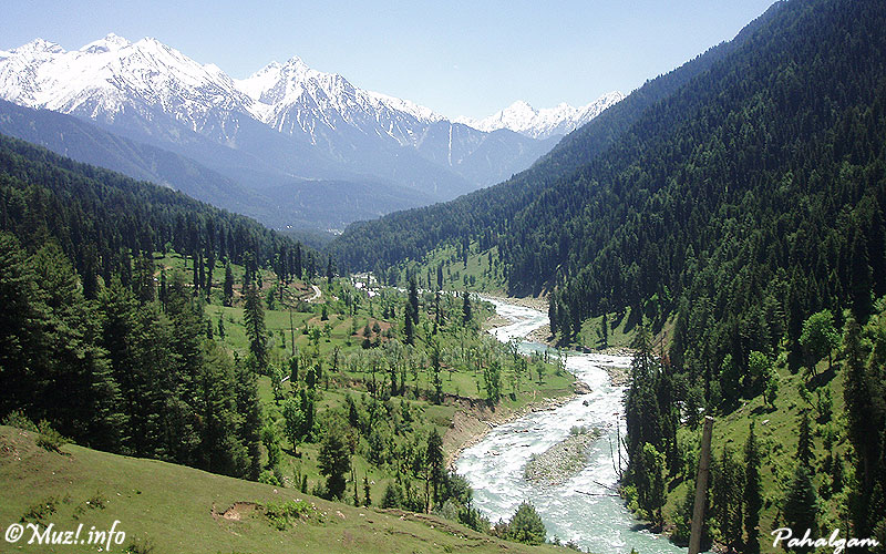 Kashmir Tour Package 8 Days