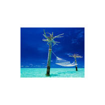 Flights For Maldives Package