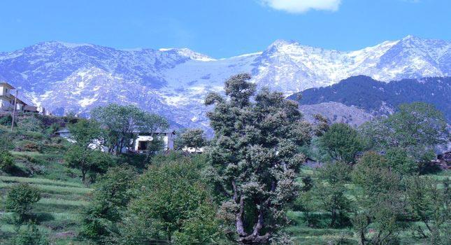 Himachal Enchants Tour