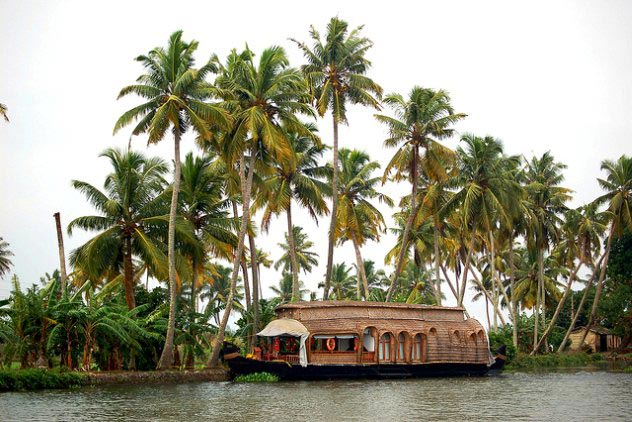 Kerala Hill Station & Backwaters Honeymoon Tour