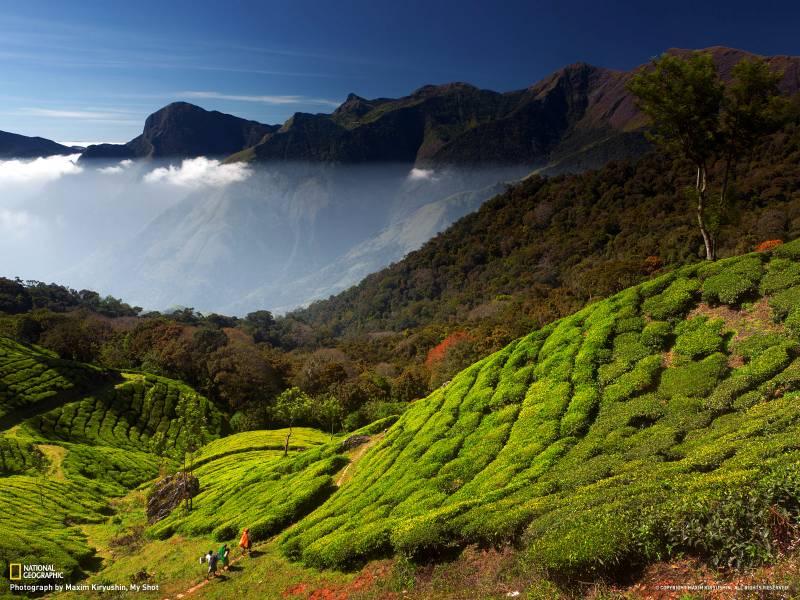 Amazing Kerala Trip - Deluxe Tour