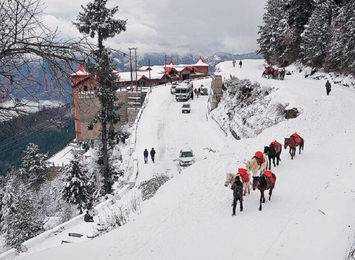 Charming Shimla Mystic Manali Honeymoon Tour (05 Nights/ 06 Days)