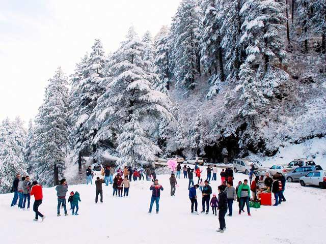 Himachal Holly Tour