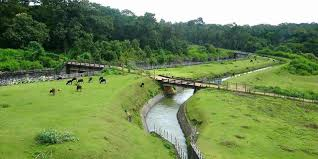 AMAZING MYSORE With COORG TOUR
